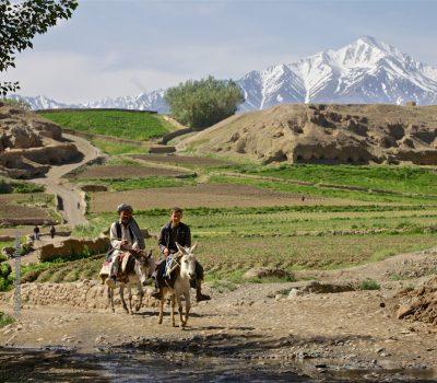 Bound for Market – Afghanistan